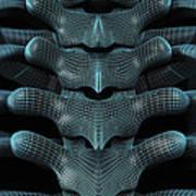 The Upper Spine Wireframe Art Print