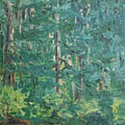 The Vosges Forest Art Print