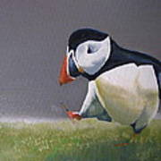 The Walking Puffin Art Print by Eric Burgess-Ray