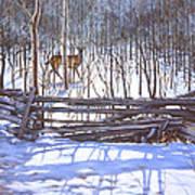 The Watcher In The Wood Art Print by Richard De Wolfe