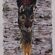 The Watchful Wolf Art Print