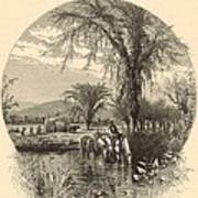 The White Mountains From The Conway Meadows 1872 Engraving Art Print