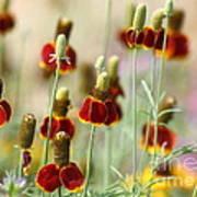 The Wildest Of Flowers Art Print