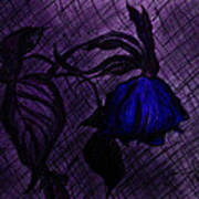 The Wilted Blue Rose Art Print