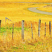 The Winding Road The Crooked Fence And The Bluebird Art Print