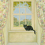 The Window Cat Art Print