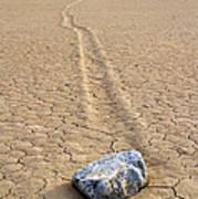 The Winner Death Valley Moving Rock Art Print