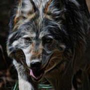 The Wolf Digital Art Art Print