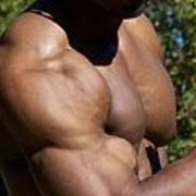The Wonder Of Biceps Art Print