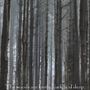 The Woods Print by Bill Wakeley
