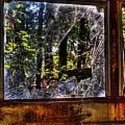 The Woods Through A School Bus Window Art Print