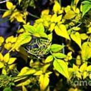 The Yellow Plant Art Print