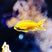 The Yellow Submarine Art Print