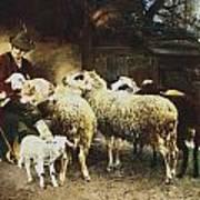 The Young Shepherd Art Print