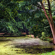 There Is Always A Hope. Park Of De Haar Castle Print by Jenny Rainbow
