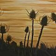 Thistles At Sunset Art Print
