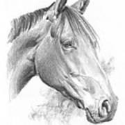 Thoroughbred Pencil Portrait Art Print