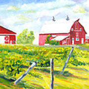 Thousand Islands Winery-september Art Print