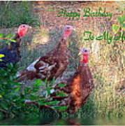 Three Amigos Happy Birthday Husband Art Print