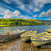 Three Boats Art Print by Adrian Evans