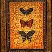 Three Butterflies Two Art Print
