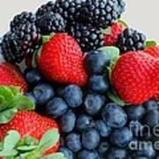 Three Fruit 2 - Strawberries - Blueberries - Blackberries Art Print