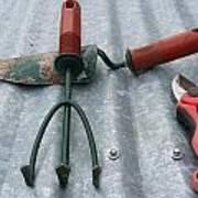 Three Garden Tools Art Print