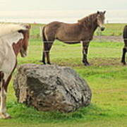 There Were Three Horsegirls And One Big Gray Stone  Art Print