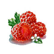 Three Happy Raspberries Art Print