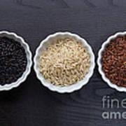 Three Kinds Of Rice Art Print