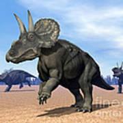 Three Nedoceratops In The Desert Art Print