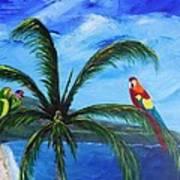 Three Parrots Art Print