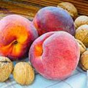 Three Peaches And Some Walnuts Art Print