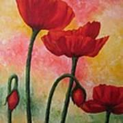 Three Red Poppies Art Print