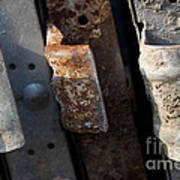 Three Shades Of Rust Art Print