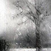 Through Glass -- A Tree In Winter Art Print