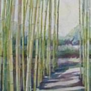 Through The Bamboo Grove Art Print