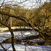 Through The Branches 2 - Central Park - Nyc Art Print