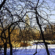 Through The Branches 3 - Central Park - Nyc Art Print