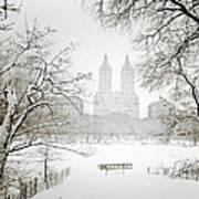 Through Winter Trees - Central Park - New York City Art Print