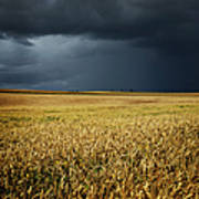 Thunderstorm Clouds Over Wheat Field Art Print