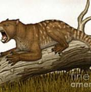 Thylacoleo Carnifex, A Marsupial Art Print