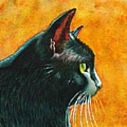 Black Cat In Profile Art Print