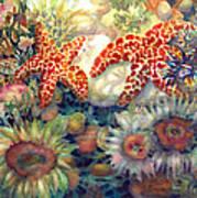 Tidal Pool II Art Print by Ann  Nicholson