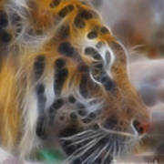 Tiger-5344-fractal Art Print