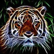 Tiger Abstact Art Art Print