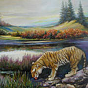Tiger By The River Art Print