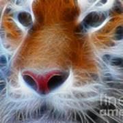 Tiger Face Fractal Art Print