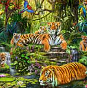 Tiger Family At The Pool Art Print