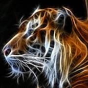 Tiger Fractal Art Print